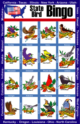 State Bird Bingo Game
